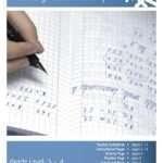 Multidigit Arithmetic +/- Lesson Plan