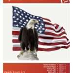 Symbols in America Lesson Plan