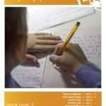 Irregularly Spelled Words Lesson Plan