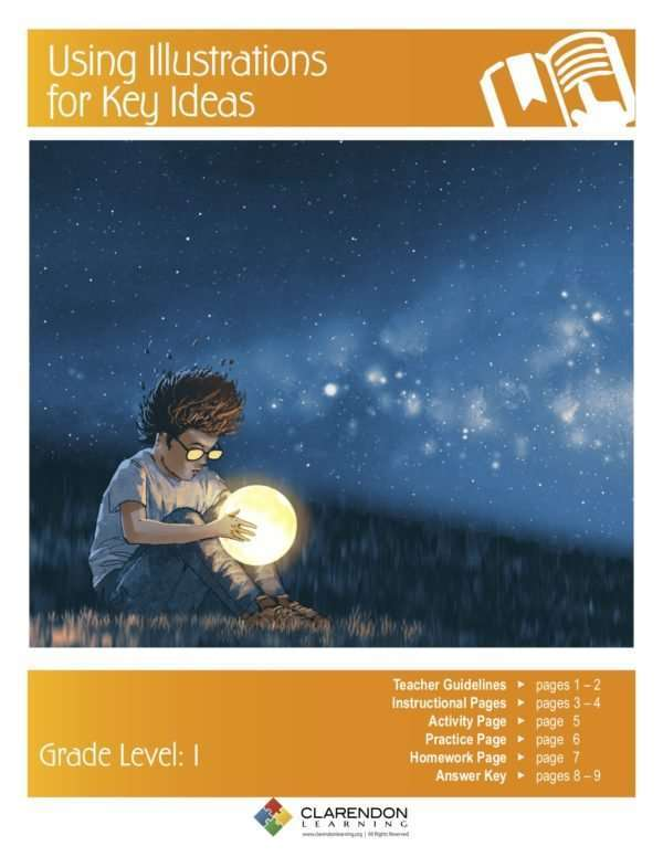 Using Illustrations for Key Ideas Lesson Plan